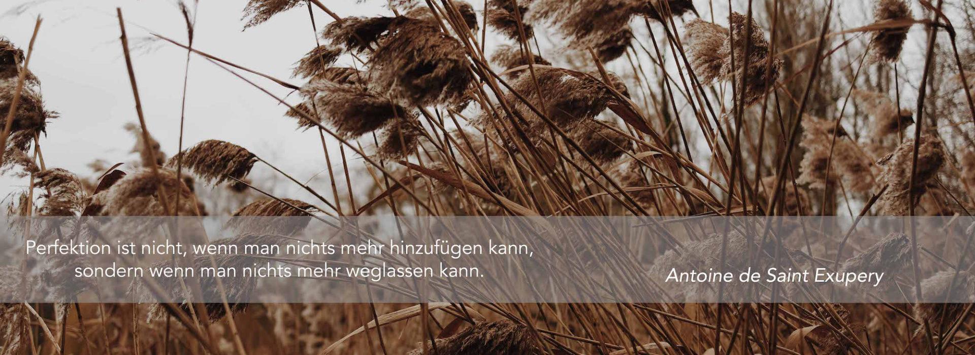 Pflanzenkläranlagen Reinhard Polte
